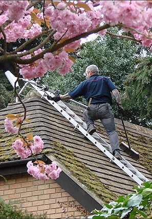 Our staff cleaning the moss from a roof in Hawkinge near Folkestone